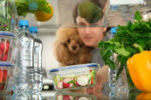 Is It Safe for your Dog to be Vegan